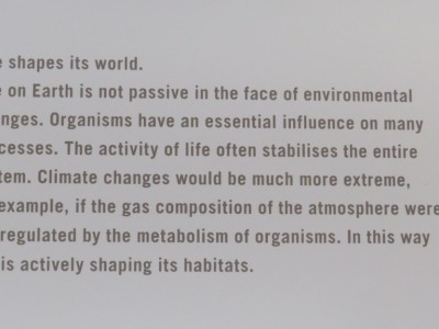 Life shapes and preserves life on our Planet