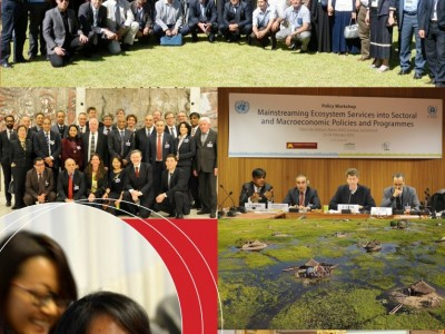 Terminal Evaluation of the 'Strengthening ecosystems and development linkages through innovative economic approaches for green growth'