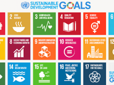 Are the SDGs winning?