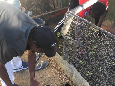 A budding collaboration: Eloolo Permaculture to support Sonder Water Community (by Reinhold Mangundu)