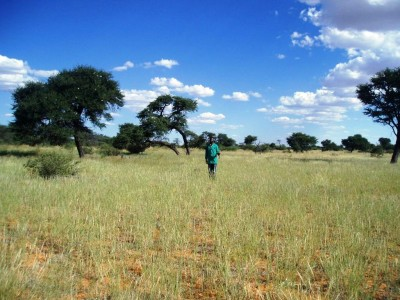 Ramblings and shared thoughts on land redistribution in Namibia